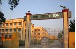 Polytechnic Institute in every District